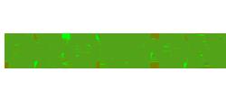 Groupon e-commerce